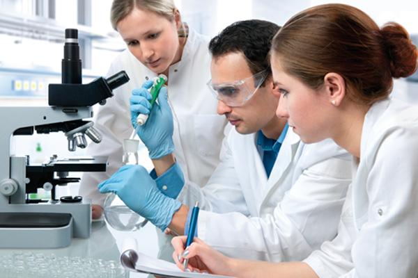 Анализ крови на щелочную фосфатазу: описание, значение и подготовка к анализу