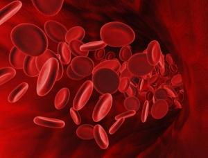 При каких заболеваниях уровень эритроцитов повышается