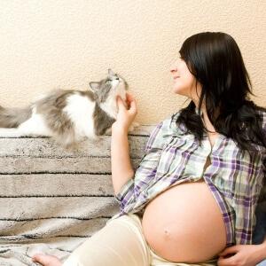 Токсоплазмоз при беременности: опасность для плода, методы лечения и профилактика