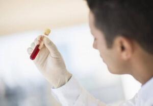 Тиреоглобулин – описание и функции