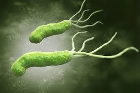 При неправильном лечении хеликобактериоза могут возникнуть тяжелые осложнения