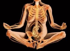 Рентгеновские лучи влияют на нормальное развитие систем и органов плода