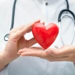 УЗИ сердца – эффективная диагностика работы и строения сердца