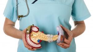 Поджелудочная железа – это очень важный орган пищеварительной системы