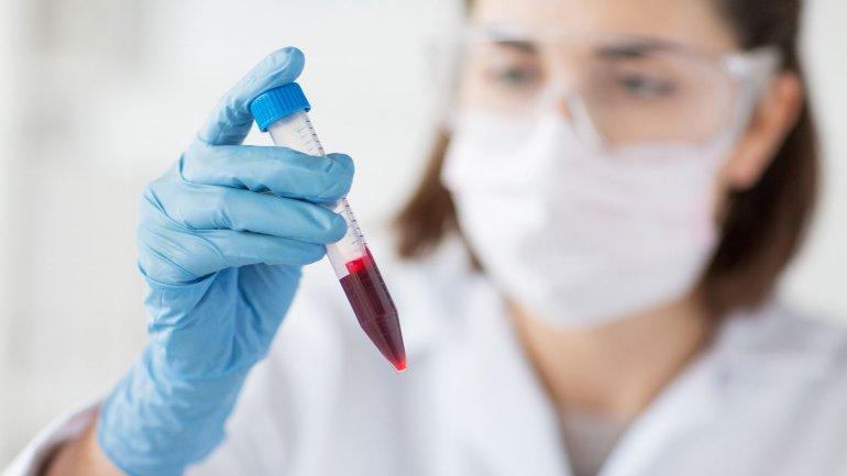 Анализ крови — НСТ: норма гематокрита и причины отклонения