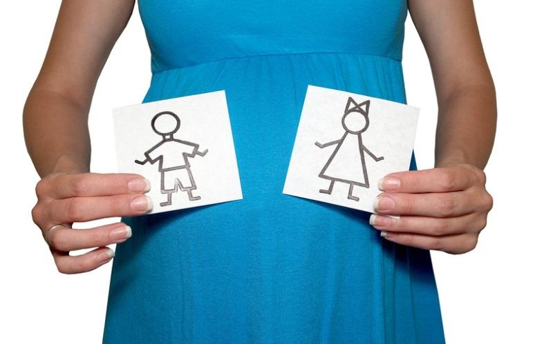 Беременным на заметку: с какой недели можно узнать пол ребенка