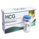 Укол ХГЧ – это инъекции гормональных препаратов, для восстановления овуляции и образования желтого тела в яичнике