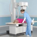 Рентген копчика – это эффективная диагностика, которая может выявить разные травмы, заболевания, воспаления, новообразования и пр.