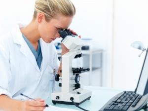 Расшифровка анализа: норма у мужчин и женщин