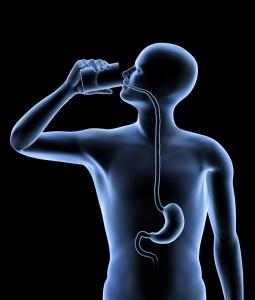 Правильная подготовка к рентгену пищевода – гарантия достоверного результата