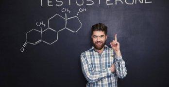 Свободный тестостерон – это биологически активная фракция тестостерона, которая не связана с белками крови