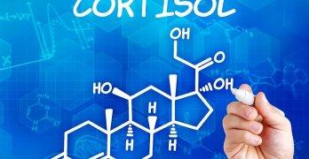 Кортизол – это биологически активный глюкокортикоидный гормон стероидной группы
