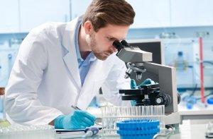 Кокки – это группа шаровидных бактерий, которые живут в организме человека