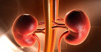 Диабетическая нефропатия – это тяжелое осложнения сахарного диабета на почки