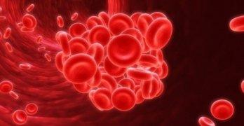 Густая кровь – это очень опасно!