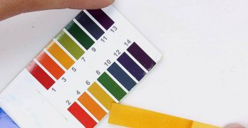 Кислотность мочи – показатель наличия количества ионов водорода в моче