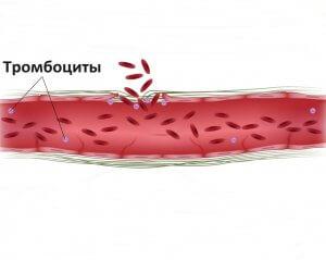 Показатели свертываемости крови и их норма по возрасту