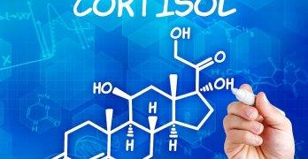 Кортизол – это гормон стресса