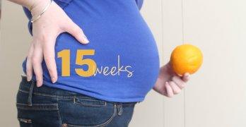 С помощью УЗИ на 15 неделе уже можно узнать пол малыша