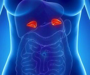 Обследование может выявить опухоль в органе