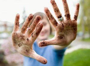 С грязными руками, немытыми овощами и фруктами цисты амебы попадают во внутрь человека