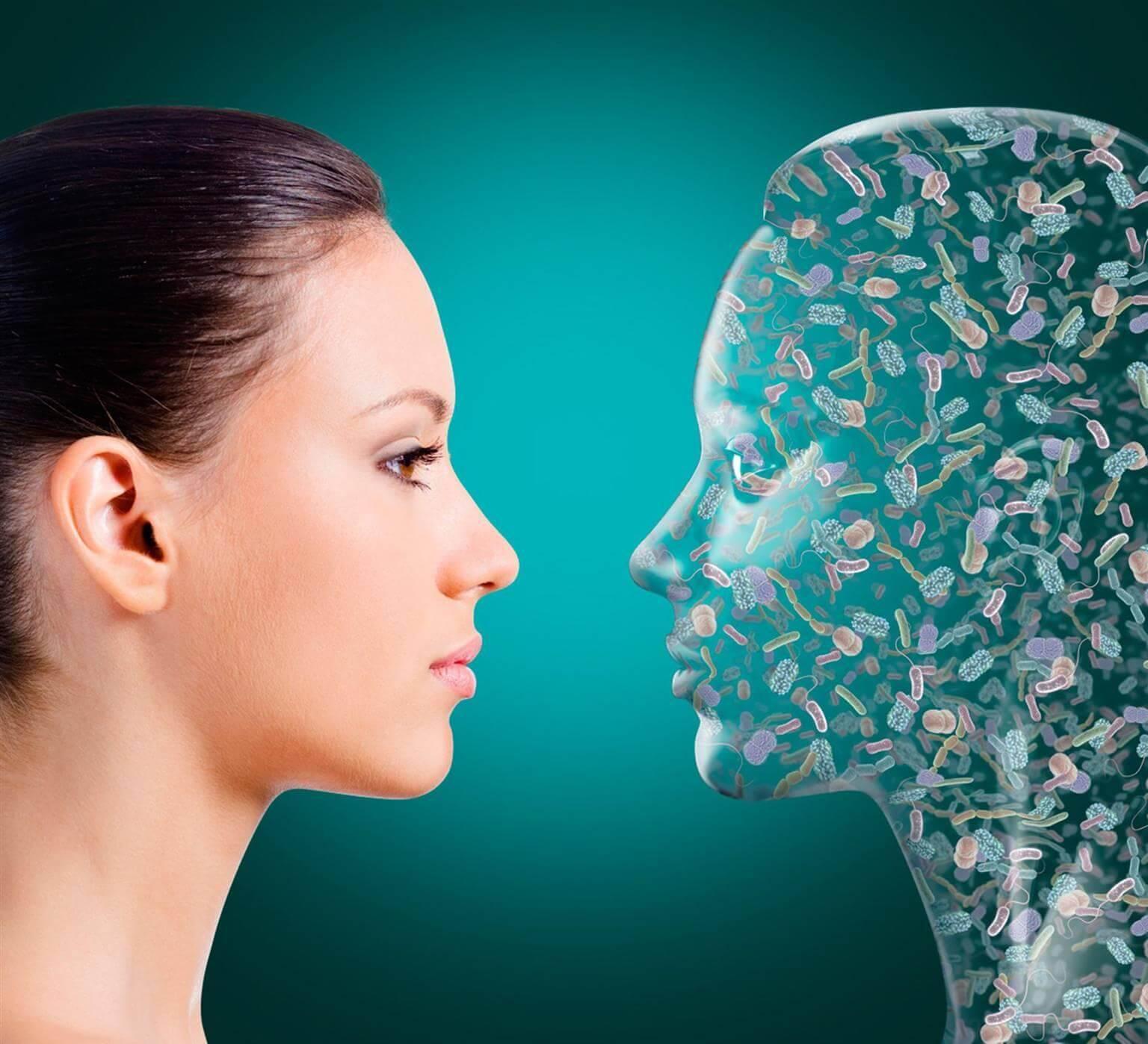 Нормальная микрофлора человека: значение, виды и функции