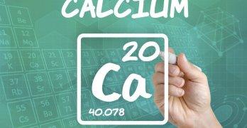 Кальций – микроэлемент, который выполняет ряд важный функций в организме человека