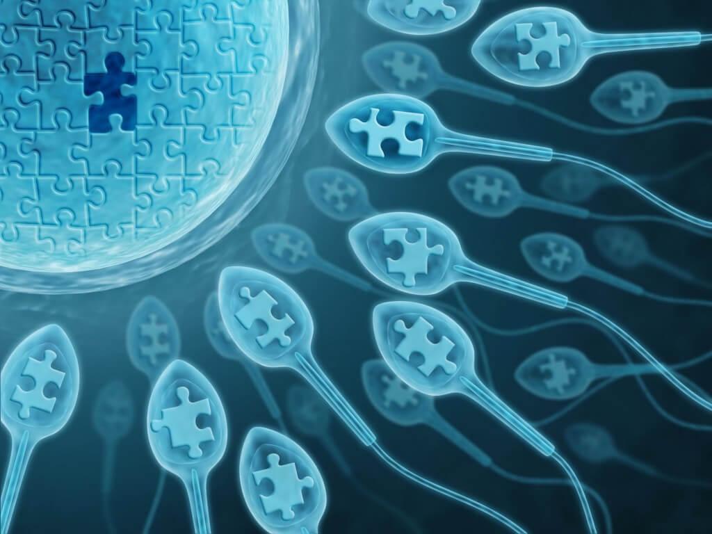 Антиспермальные антитела: диагностика, терапия, прогноз и последствия