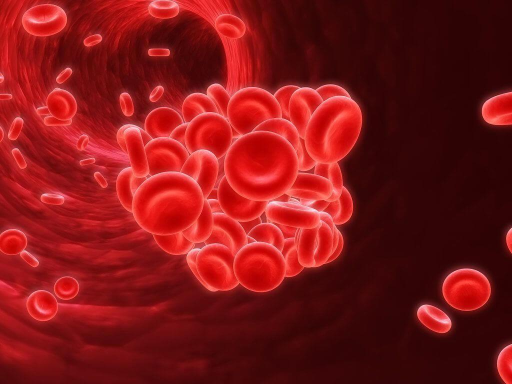 Когда назначают анализ на тромбофилию и о чем он может рассказать?