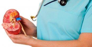Вызвать диффузные изменения перенхимы почек могут несколько причин