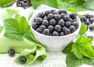 Ягоды черной смородины содержат витамин С и являются природным антибиотиком