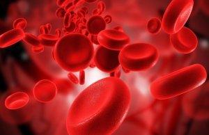 Гемоглобин – это железосодержащий белок, входящий в состав эритроцитов