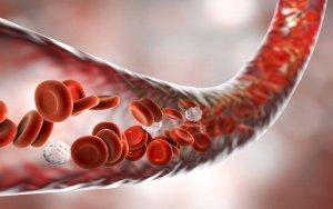 Венозные и артериальные тромбозы - основные проявления синдрома