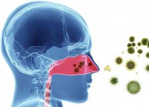 Инфекция может передаваться воздушно-капельным путем