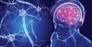рассеянный склероз (РС)