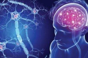 Диагностика рассеянного склероза — электрофорез ликвора и другие анализы необходимые для постановки диагноза