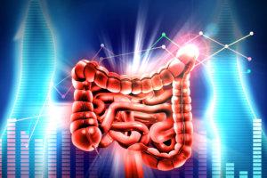 Обследование при целиакии (глютеновой болезни) — анализы на антитела, генетические и другие тесты необходимые при постановке диагноза