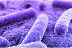 Прокальцитонин – тест помогает выявить сепсис, прежде чем он может стать причиной летального исхода