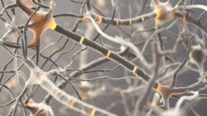 Синдром Гийена-Барре — как диагностируется