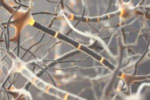 Как диагностируется синдром Гийена-Барре?