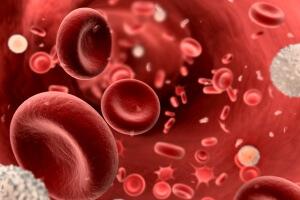 Изменение показателей ферментов крови