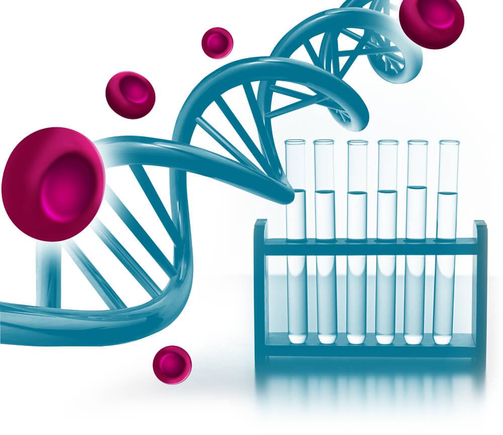 Мутация генов гемостаза: проявления и последствия