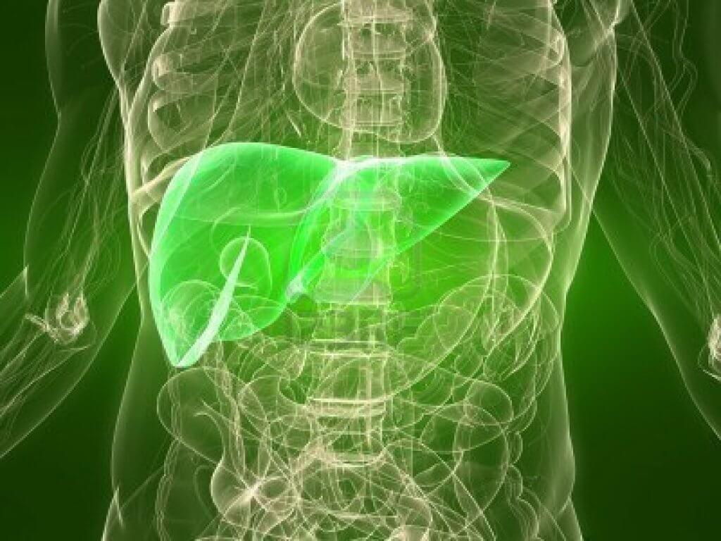 Безинтерфероновая терапия гепатита С: новое лечение старой болезни