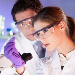 Антитела к эндомизию - описание показателя