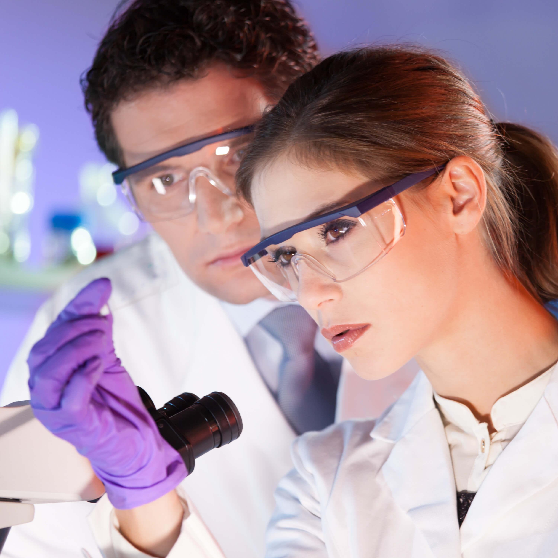 Антитела к эндомизию: описание и назначение анализа