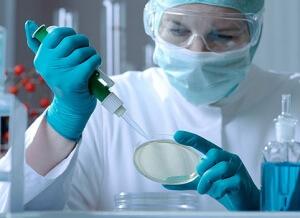 Бактериоскопический метод исследования мокроты