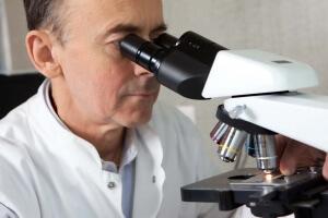 Анализ на микоплазму: расшифровка показателя