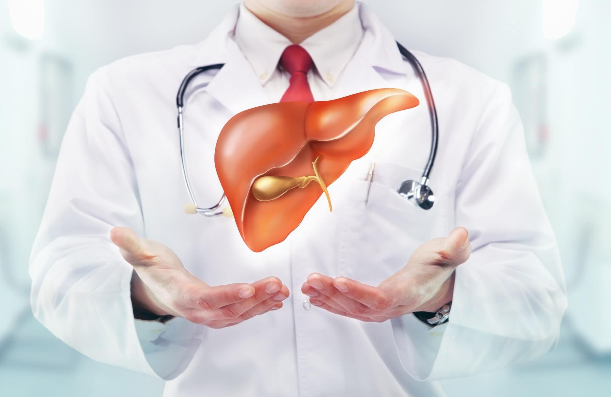Гипоэхогенное образование в печени: симптомы и диагностика с помощью УЗИ