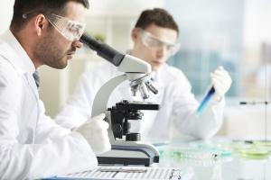 Микологическое обследование: особенности метода, назначение и процедура