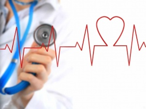 Эхокардиография сердца и сосудов – эффективная диагностика работы и состояния сердечно-сосудистой системы